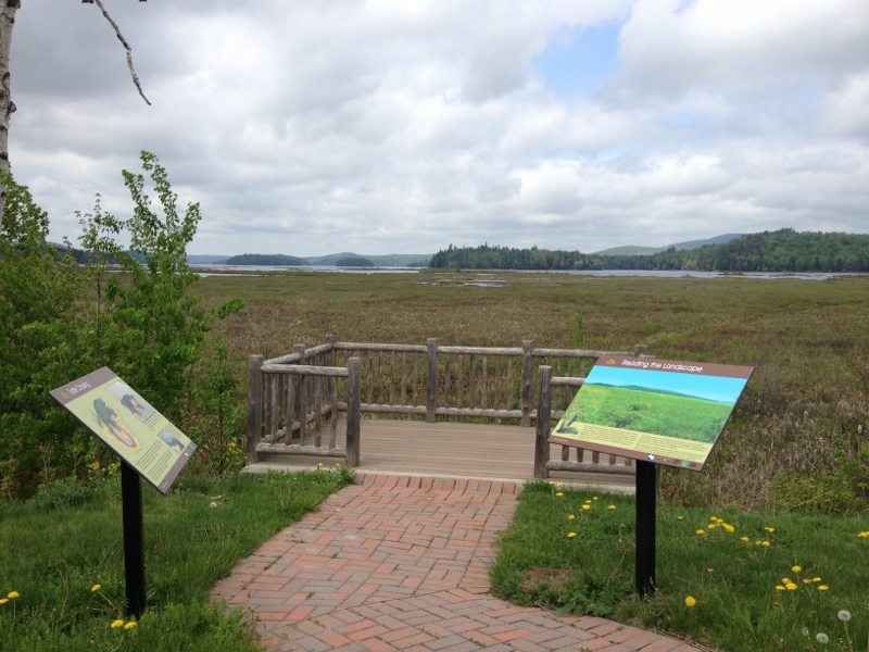 Viewing deck at Tupper Lake Marsh