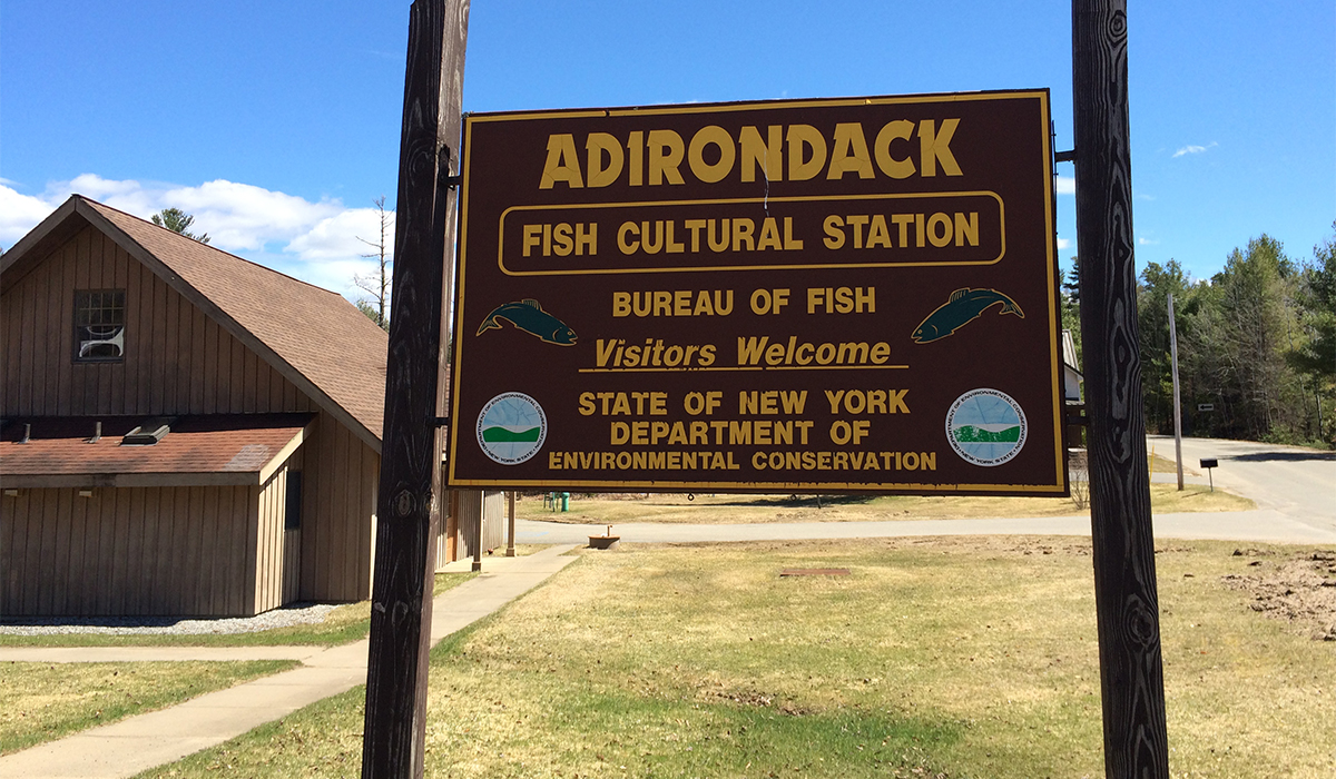 Adirondack Fish Hatchery, Lake Clear, NY