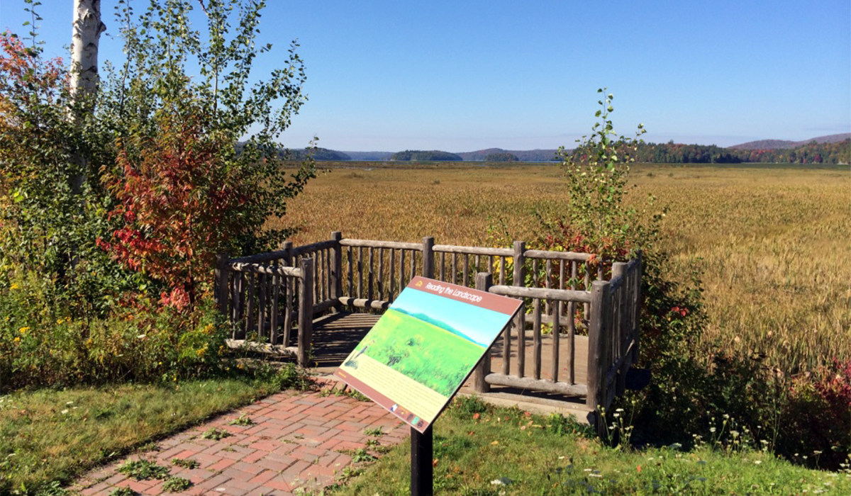 Keep an eye out for birds (and possibly even moose) at this great little overlook on Tupper Lake