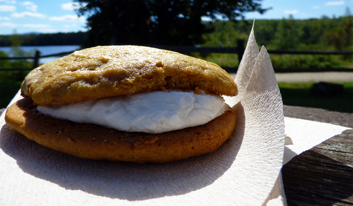 Pumpkin Whoopie Pie from Larkin's Junction Depot. Yup, I know... I've got your attention now!