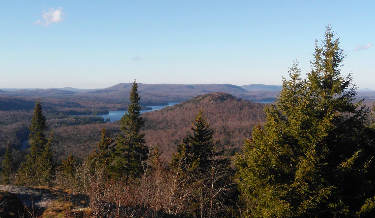 "Even ""stick season"" is glorious from top of Coney Mountain! Goodman Mountain center, with Big Tupper Lake in the distance. Photo courtesy of Debbie Meyer."