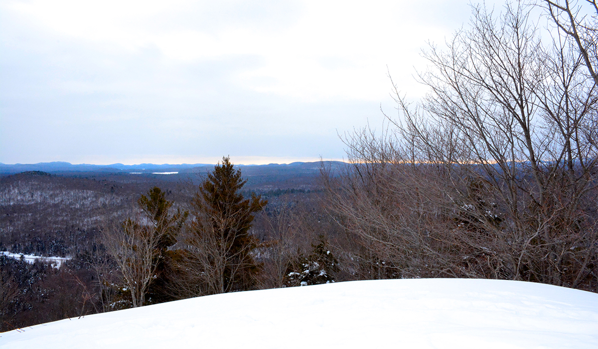 Winter summit of Goodman Mountain. Photo courtesy of Noelle Short