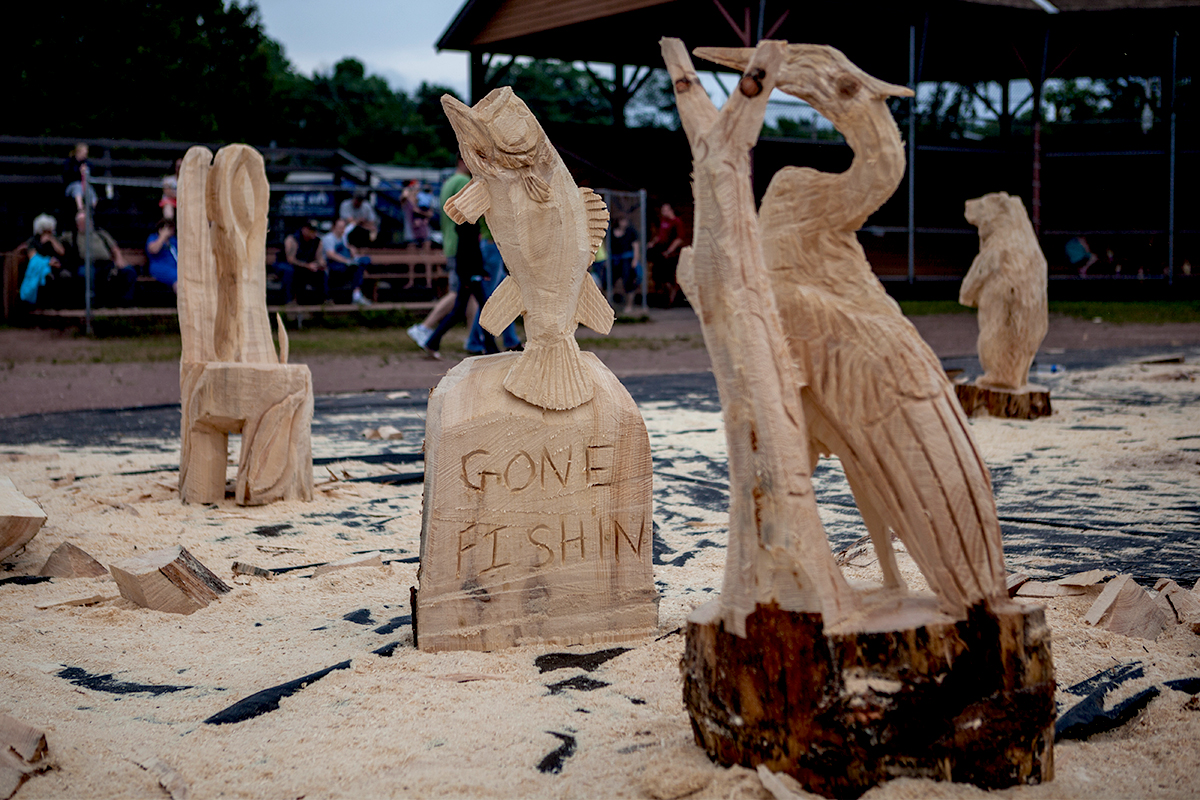 A handful of the masterpieces that the 2014 Woodsmen's Carving Competition turned out. (ROOST/Shaun Ondak photo)