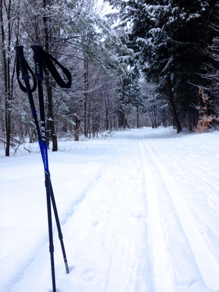 A nice set tracks on the trip in along the Cranberry Pond Loop.