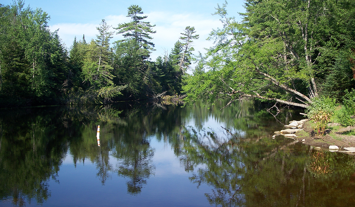 The 146-mile meandering Raquette River which travels through Tupper Lake on it way from Raquette Lake, NY to Akwesasne, NY
