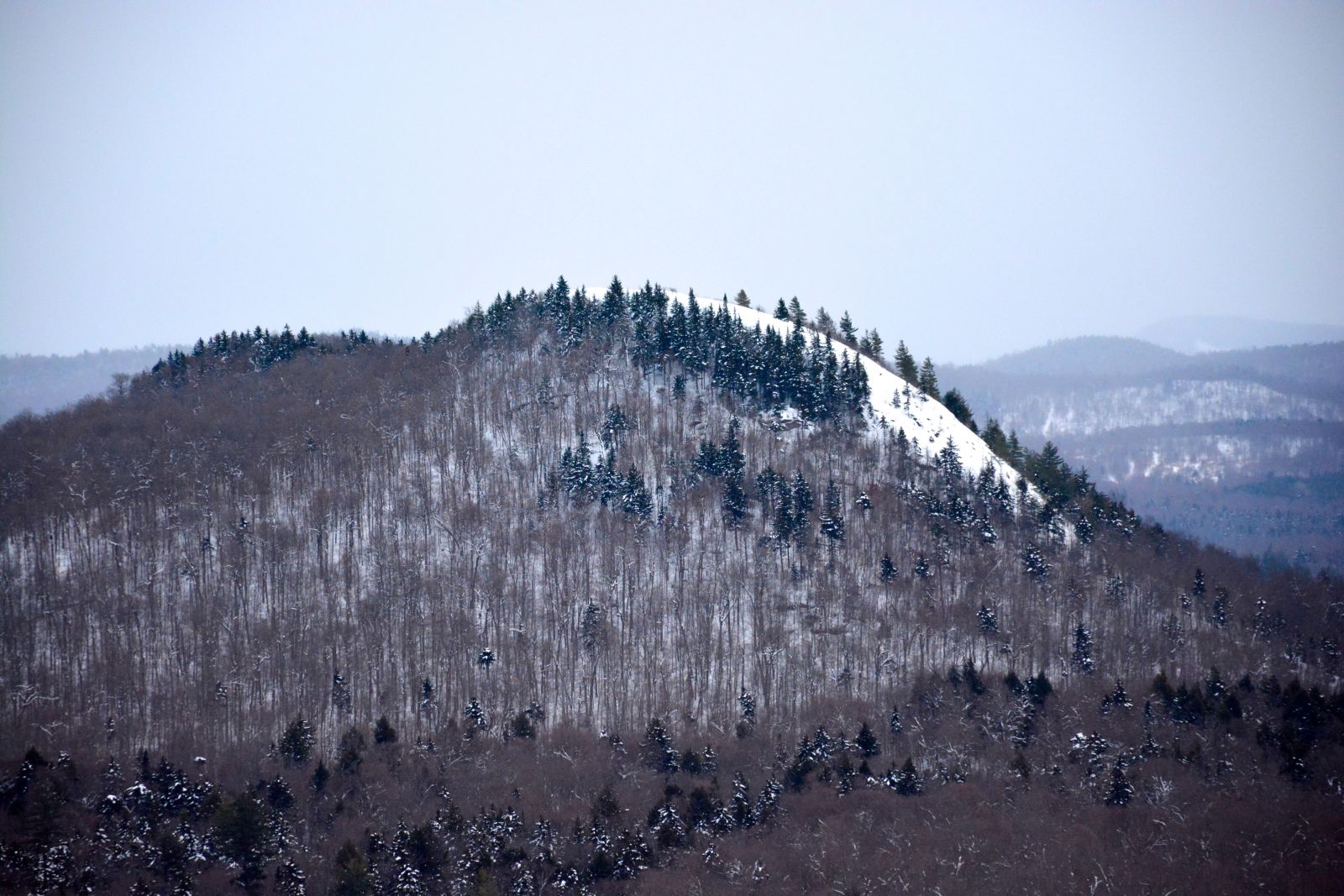 A view of Coney Mountain from the summit of Goodman Mountain