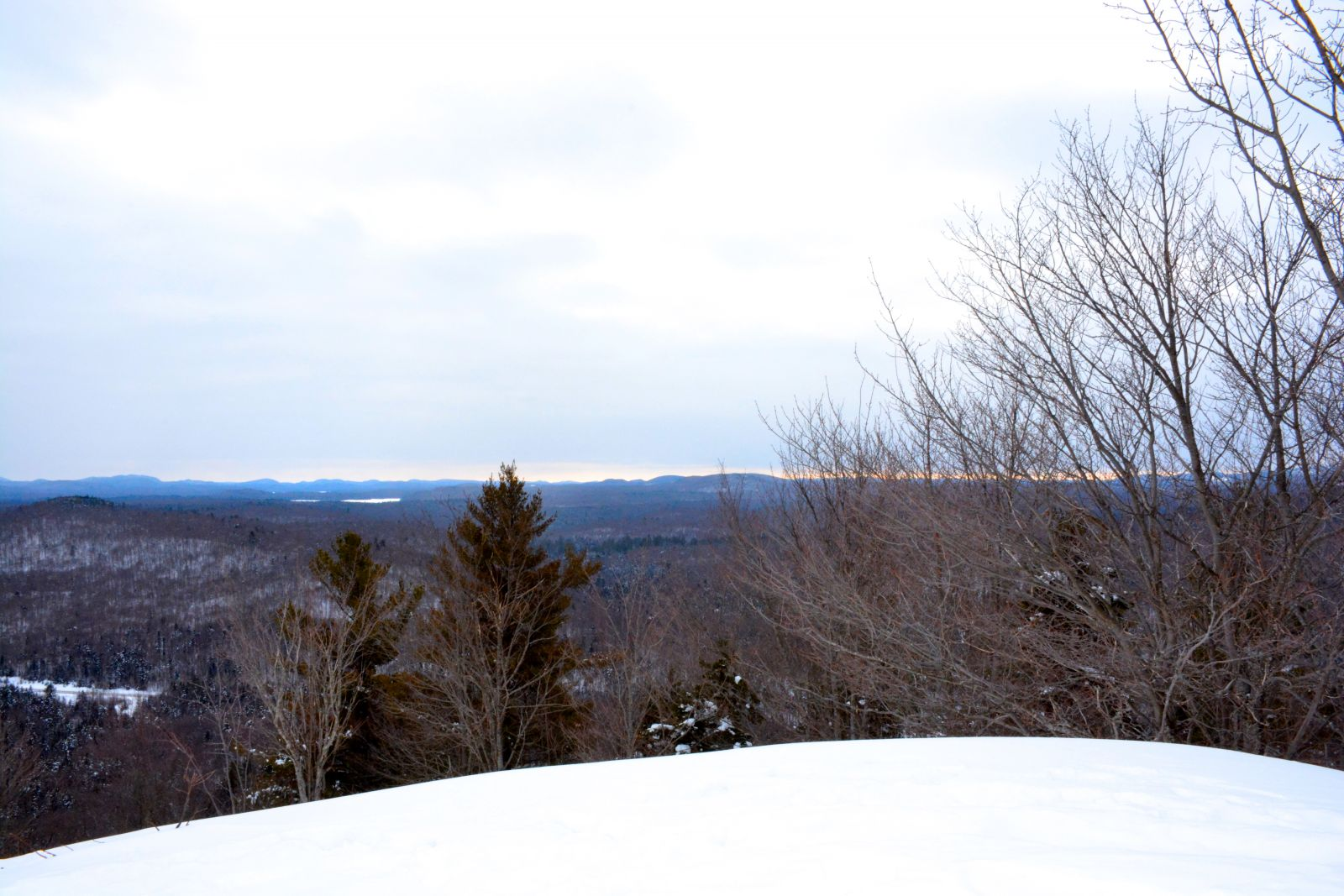 A view from the summit of Goodman Mountain