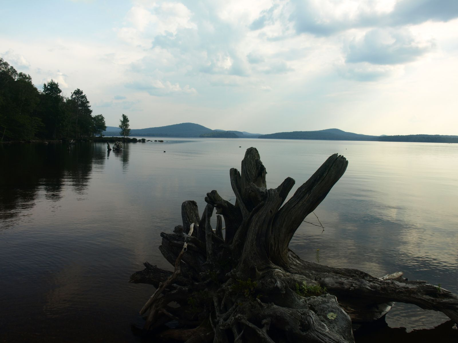 View out over Cranberry Lake
