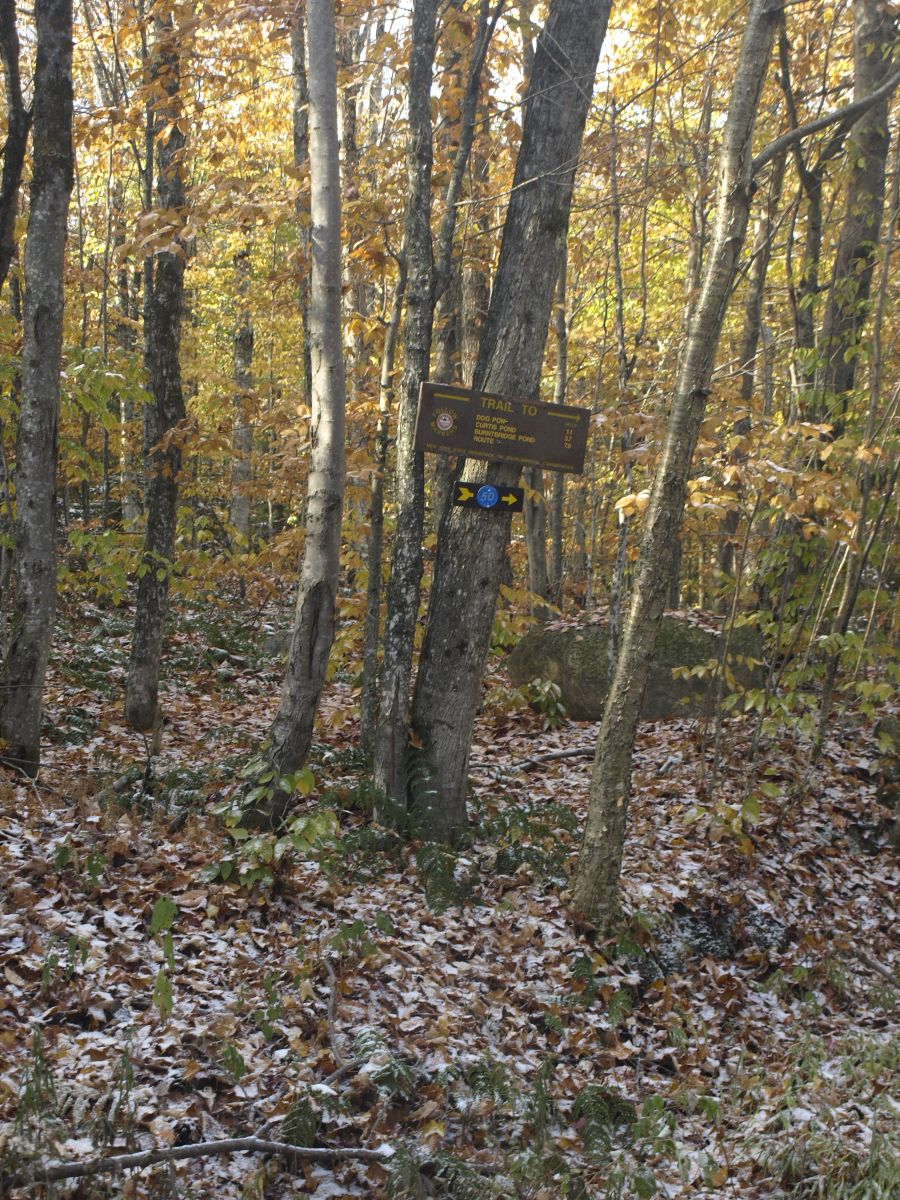 The trail junction with the Cranberry Lake 50