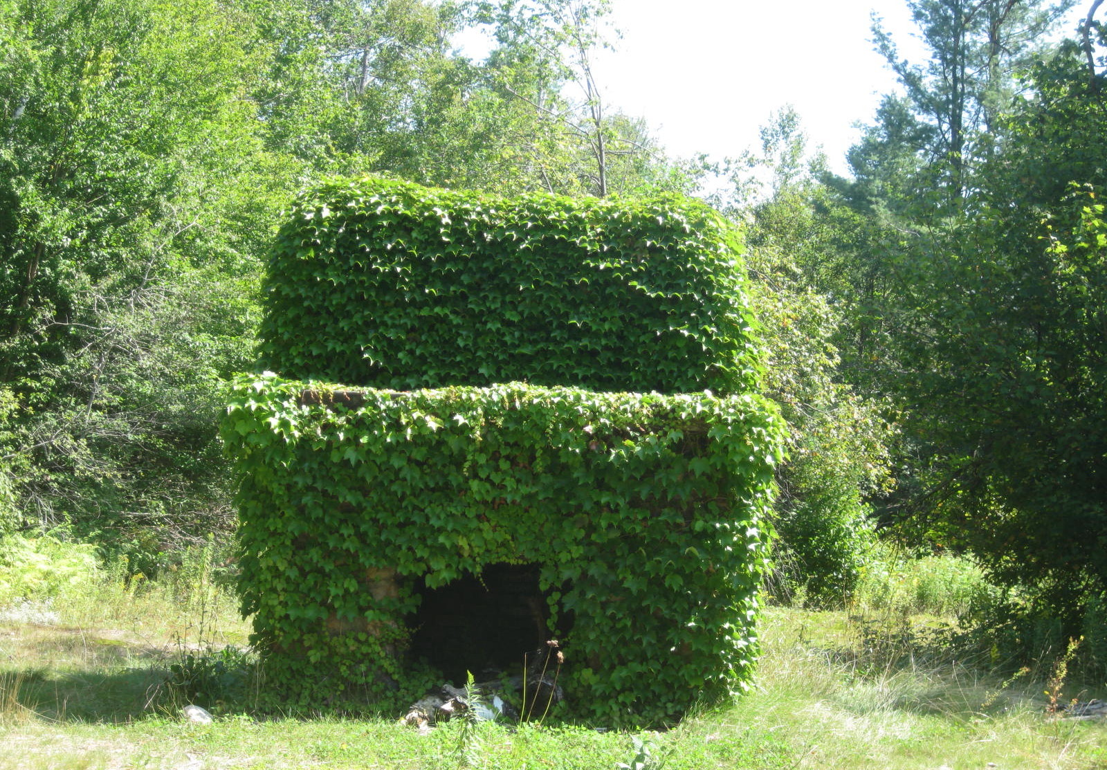 Vine covered fireplace at Lows Upper Dam