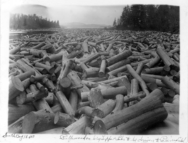 """Pulp wood in South Bay, Big Tupper Lake going to the Piercefield mill."" (Photo Courtesy of Jon Kopp ""Tupper Lake: Early Beginnings"")"