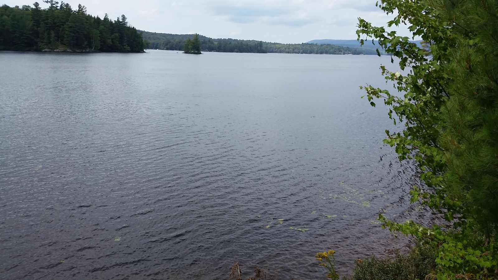 Just look at this view of Tupper Lake!