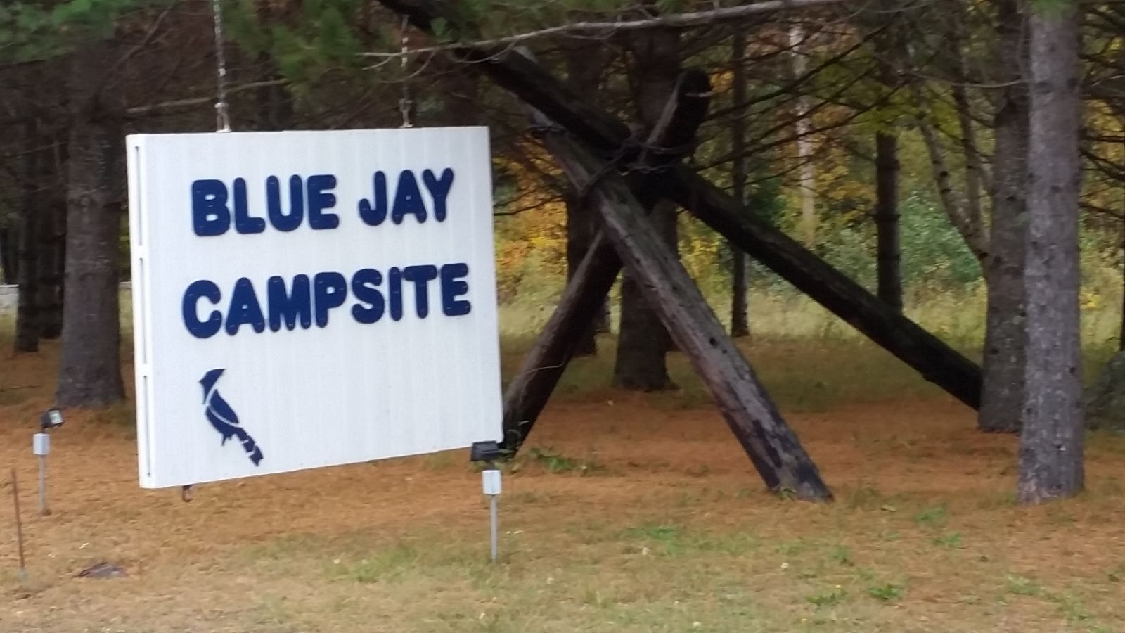 Blue Jay Campsite now I can head home!