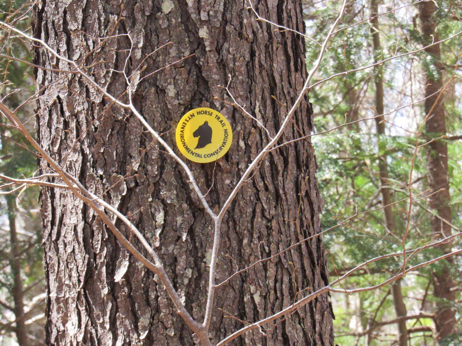 The trail markers