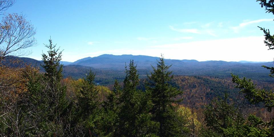 The view from the top of Panther Mountain.