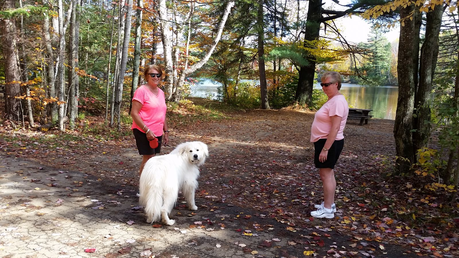 Campers from Wilmington, New York, walking their furbie!
