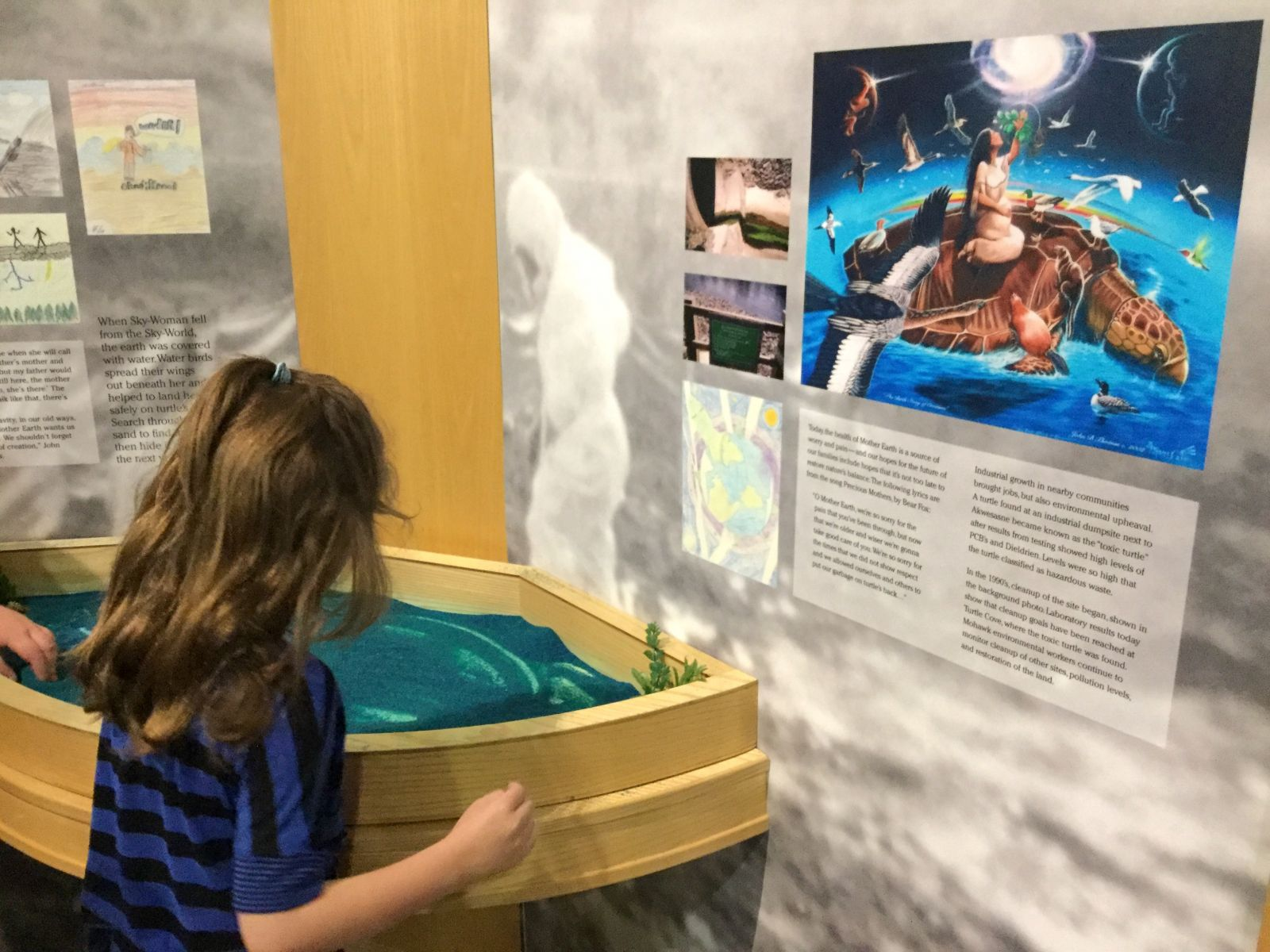 At this interactive wetlands table, visitors can craft their own ecosystem.