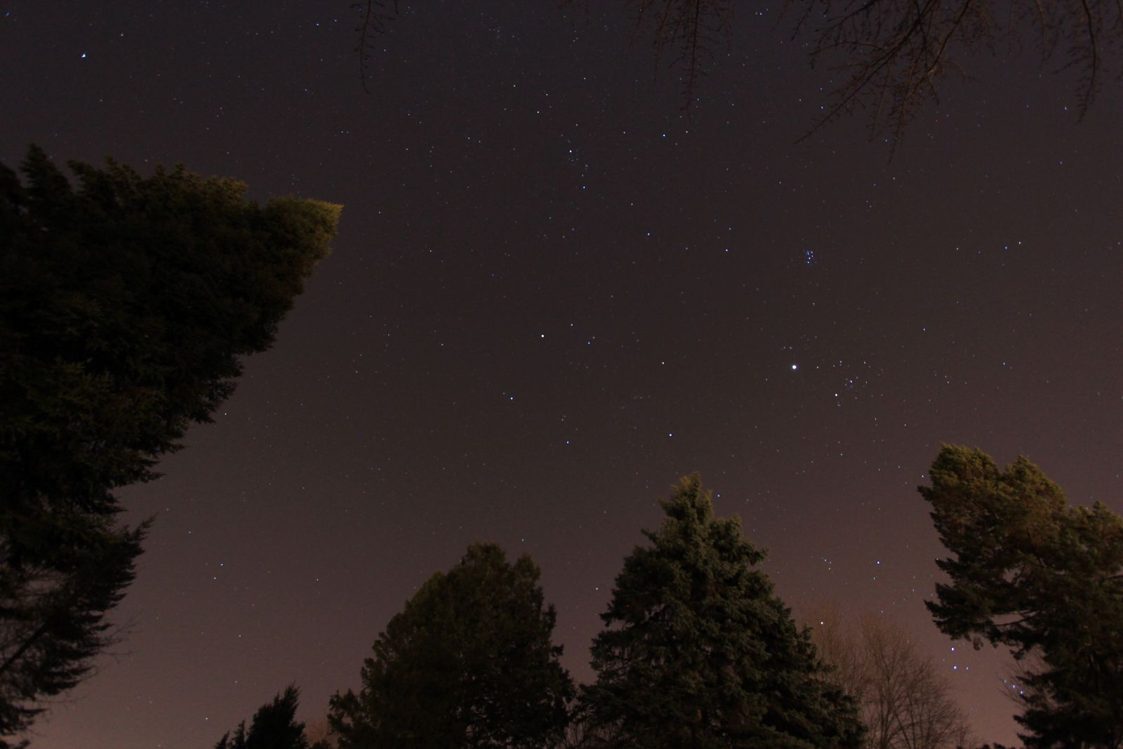 "The pink glow here is from light pollution. Photo taken with a DSLR and 10-22mm lens. The brightest ""star"" is the planet Jupiter, near the cluster of stars known as the Pleiades."