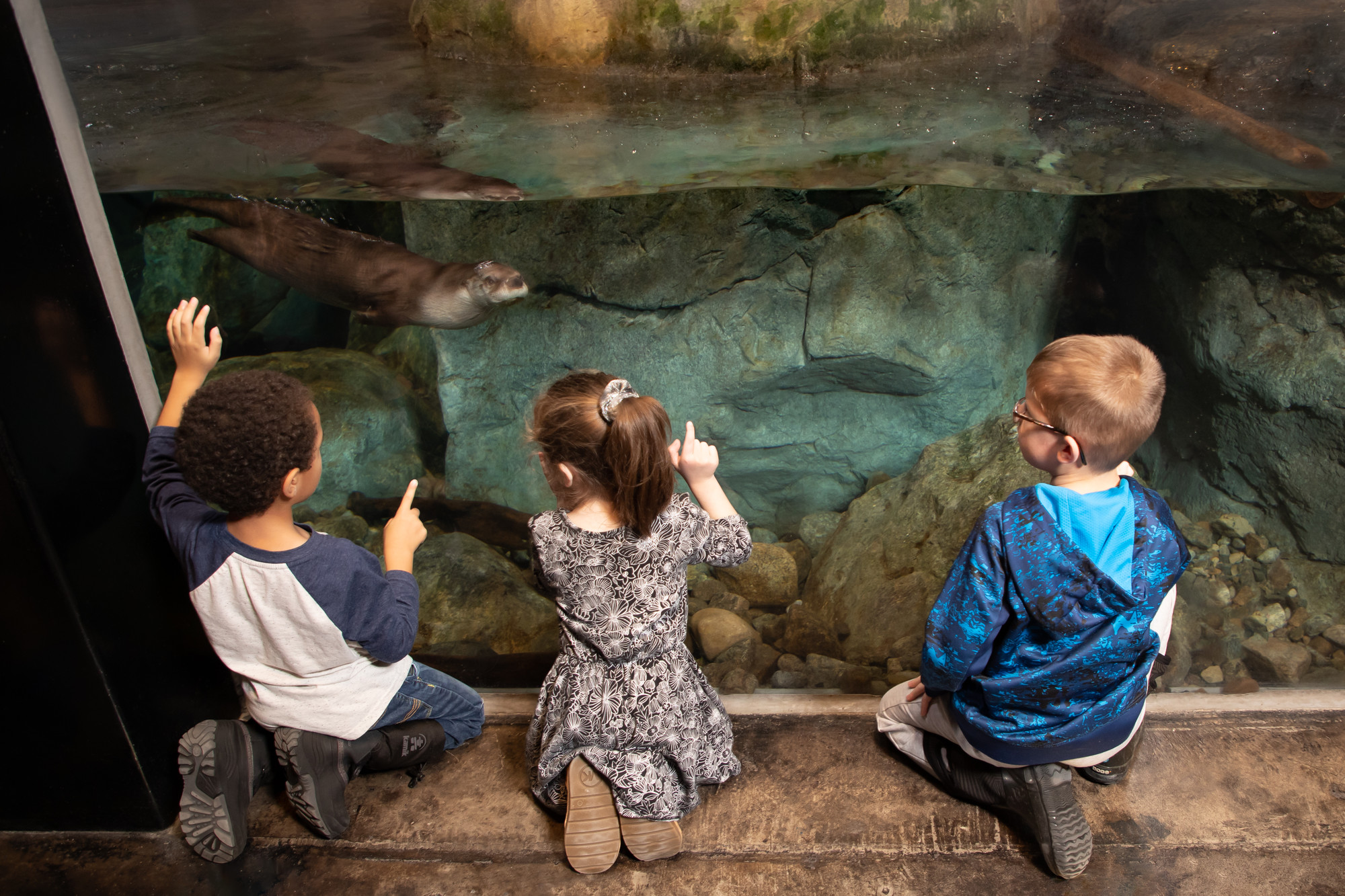 Three small children take in the underwater view of Otter Falls.