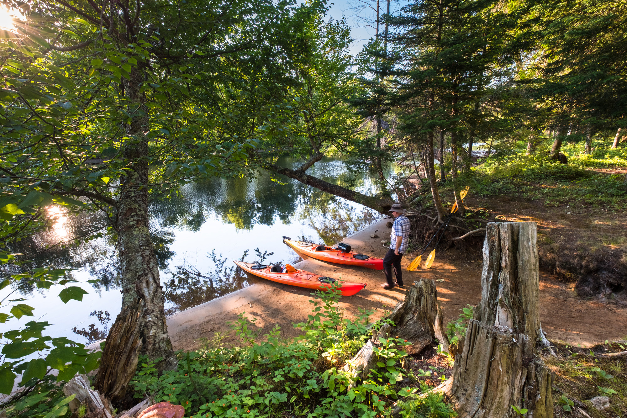 Two kayaks sitting on the shore of the river with a lush forest surrounding.