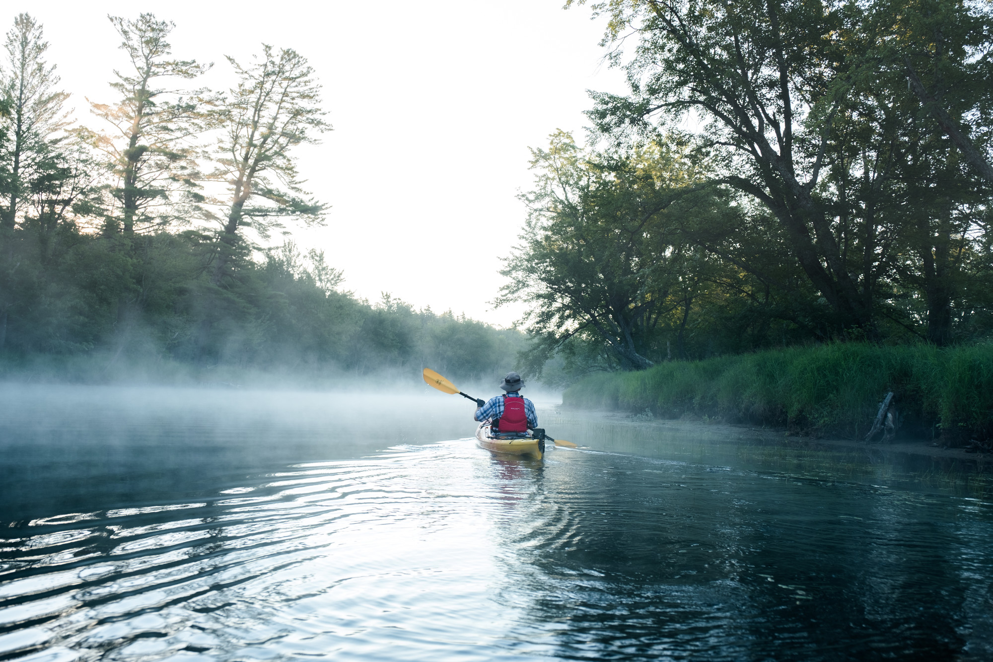 A solo kayaker paddling down a river in the morning fog.