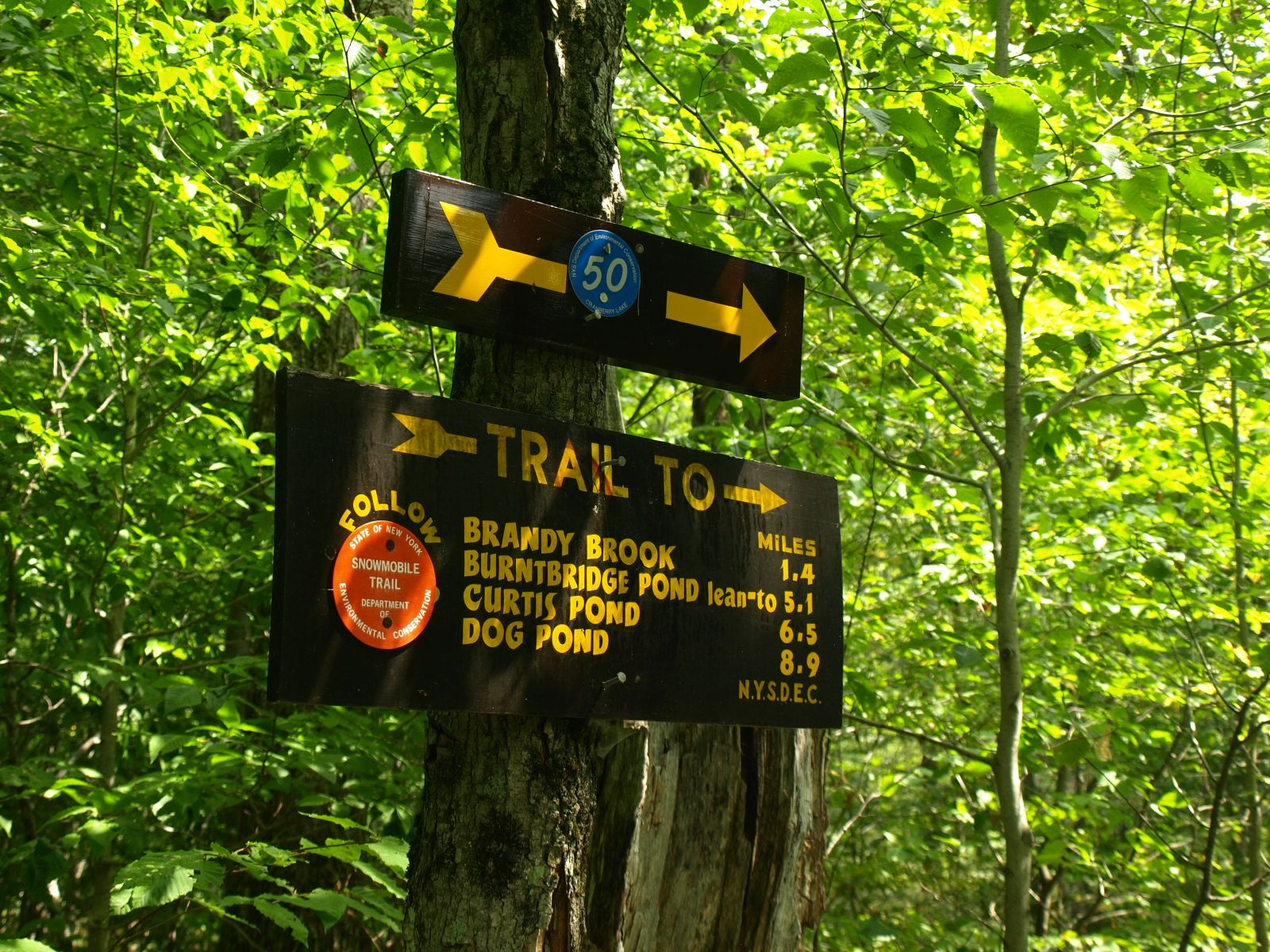 "Trail signs and blue ""50"" markers lead the way"