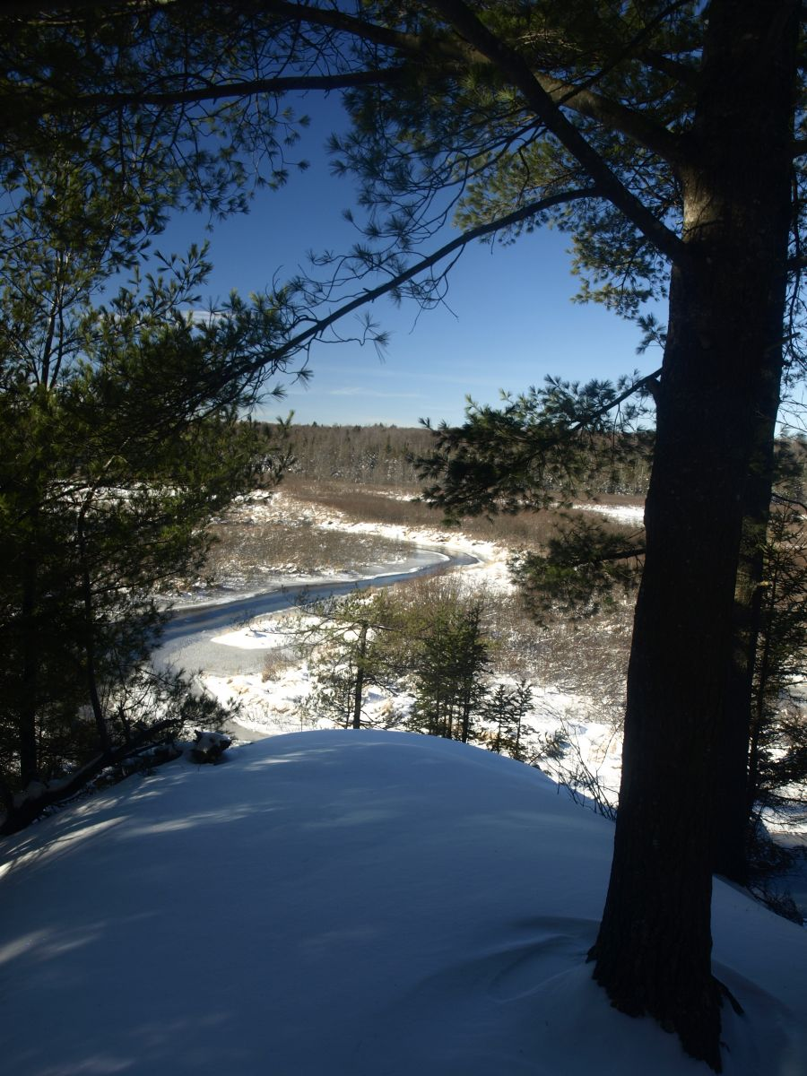 Oswegatchie River from High Rock Camps
