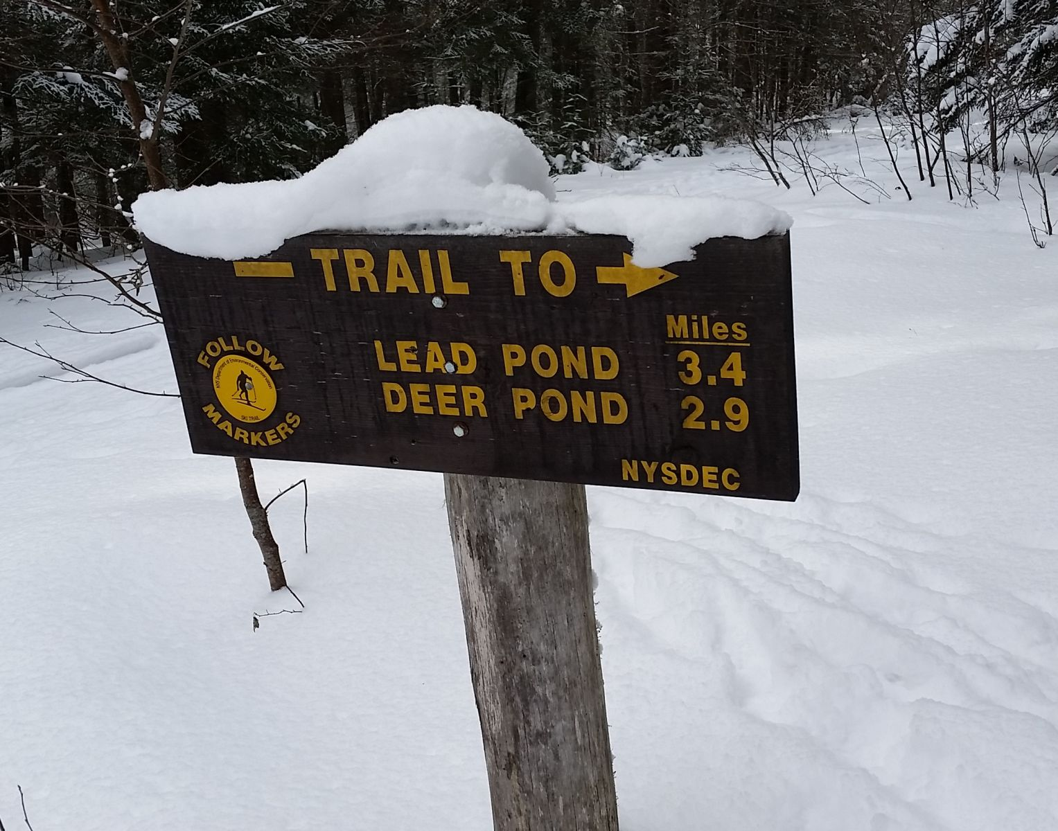 A DEC trail sign marks the way.