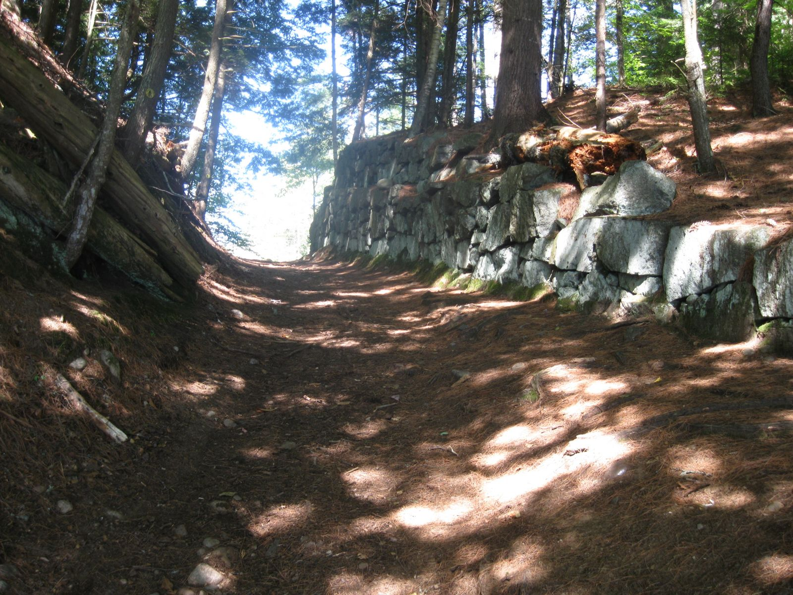 Path from Upper St. Regis to Bog Pond - 1st portage