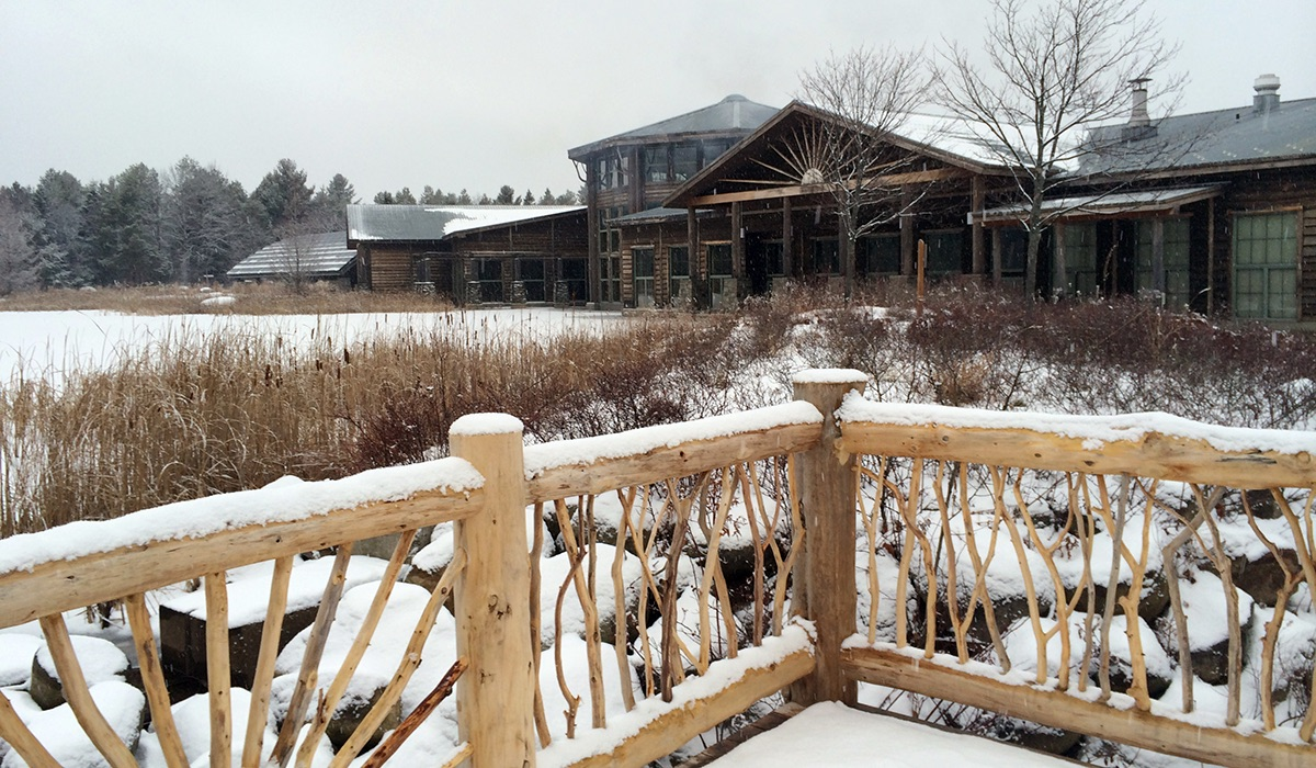 The Wild Center is just as wild in the winter.